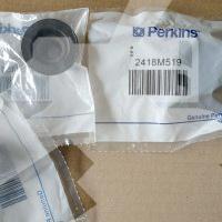 Маслосъемные колпачки 2418M519 для Perkins (Перкинс)