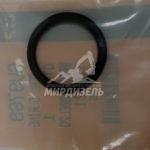 Уплотнительное кольцо 6V-9769 (Caterpillar)